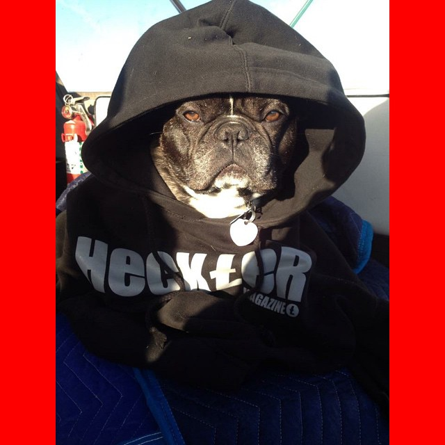 You like Heckler hoodies as much as Max does? Well…